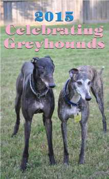 2015 greyhound desk calendar