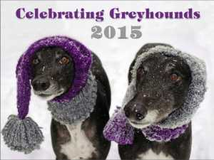 2015 greyhound wall calendar